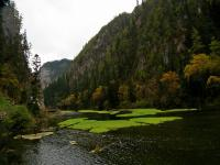 Jiuzhaigou Grass Lake