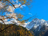 Go to Jiuzhaigou in October