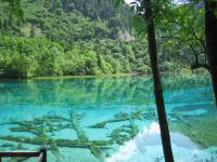 Transparent lake