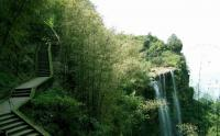 Waterfall Hidden in the Bamboo Forest
